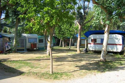 Camping Eucaliptus