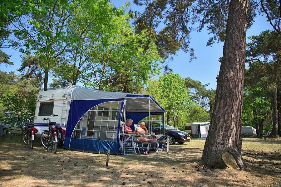 Campsite DroomPark De Zanding