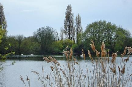 Campsite Chichester Lakeside Holiday Park