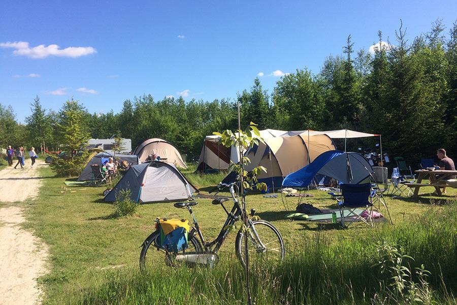 Campeggio Netl de Wildste Tuin