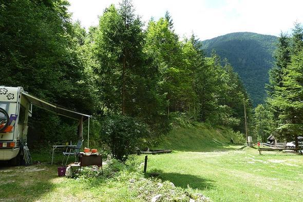 Kamp Jelincic