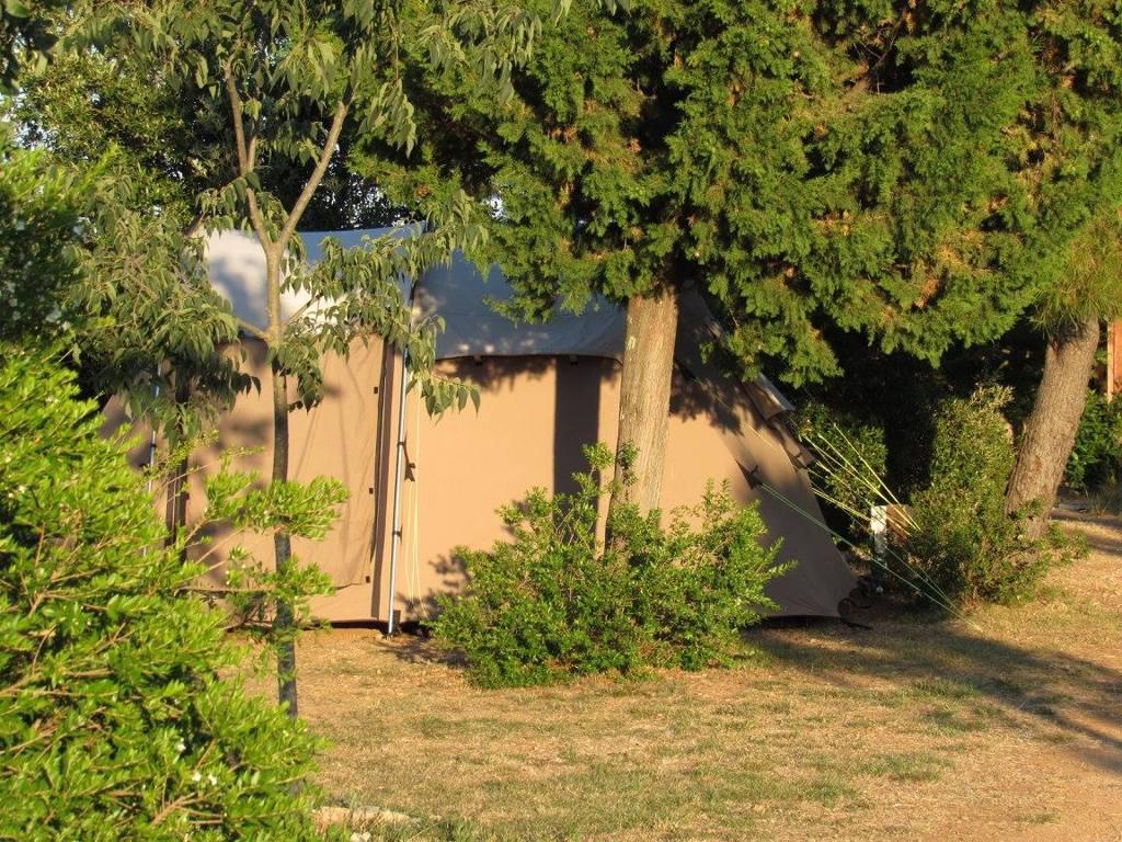 Camp Arboretum