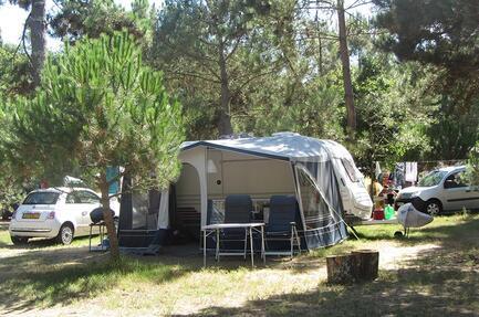 Campsite Atlantique Forêt