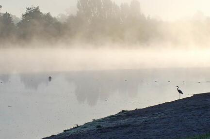 Camping du Lac de Palinges